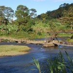 Photo of the destroyed bridge at Ranomafana village, and the new improvised one